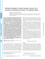 Multilevel regulation of leptin storage, turnover, and secretion by feeding and insulin in rat adipose tissue.pdf