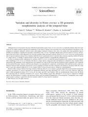 VariationHomoErectus-3DGeometricMorphometricAnalysis.pdf