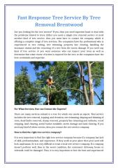Fast Response Tree Service By Tree Removal Brentwood.docx