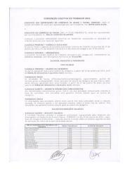 CCT COMERCIO ARAXA 2015-2015.pdf