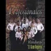 Los Profesionales - Carnaval De Verano.mp3