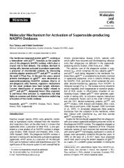 Molecular Mechanism for Activation of Superoxide-producing NADPH Oxidases.pdf