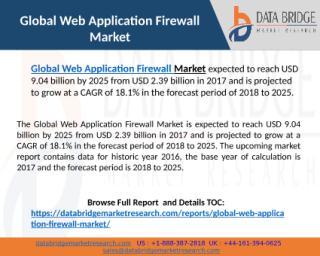 Global Web Application Firewall Market.pptx
